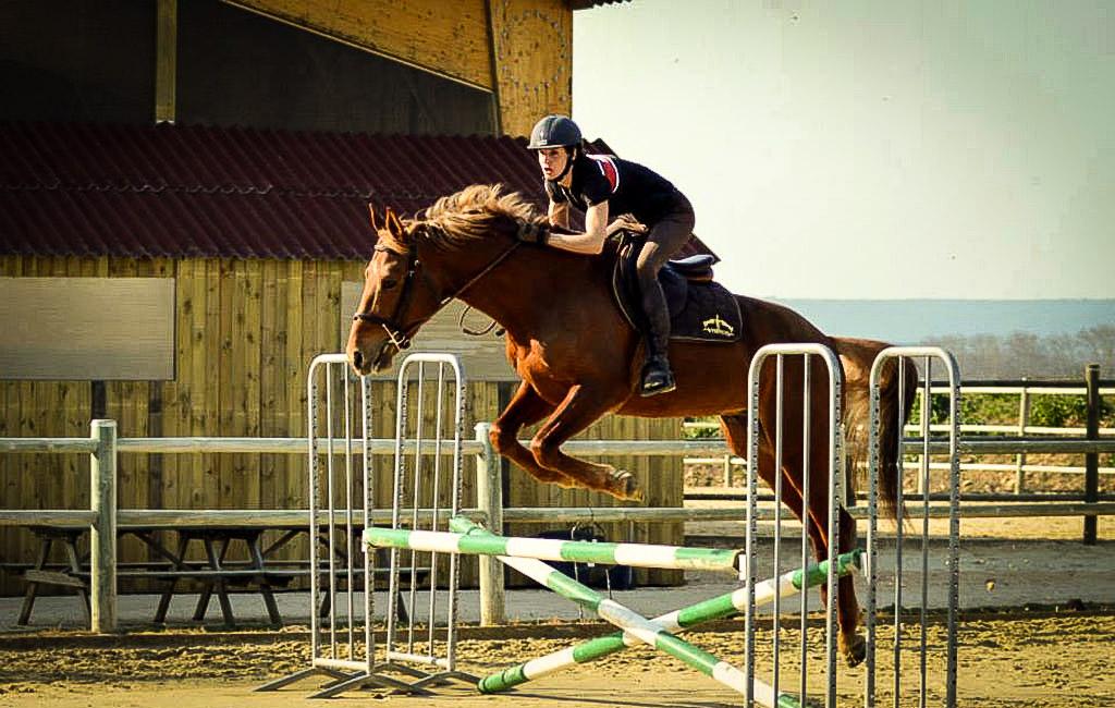 Compétitions cheval